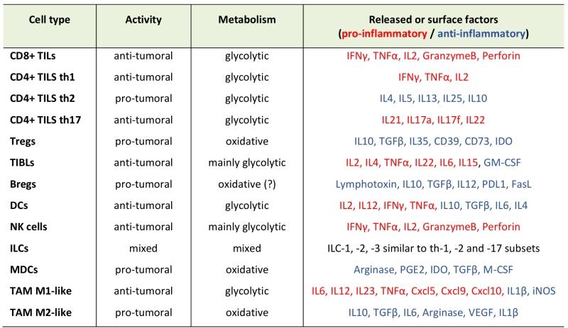 T lymphocytes against solid malignancies: winning ways to
